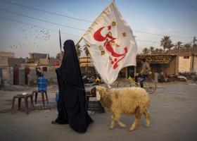 سوگواره چهارم-عکس 20-سید ولی  شجاعی لنگری-پیاده روی اربعین از نجف تا کربلا