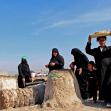 سوگواره پنجم-عکس 2-مصطفی عبیداوی-پیاده روی اربعین از نجف تا کربلا
