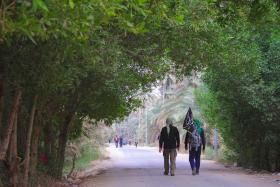 سوگواره پنجم-عکس 5-محمد عابدی-پیاده روی اربعین از نجف تا کربلا