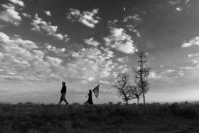 سوگواره پنجم-عکس 18-عرفان سامان فر-پیاده روی اربعین از نجف تا کربلا