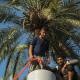 سوگواره سوم-عکس 19-جهانگیر سرزارع-پیاده روی اربعین از نجف تا کربلا