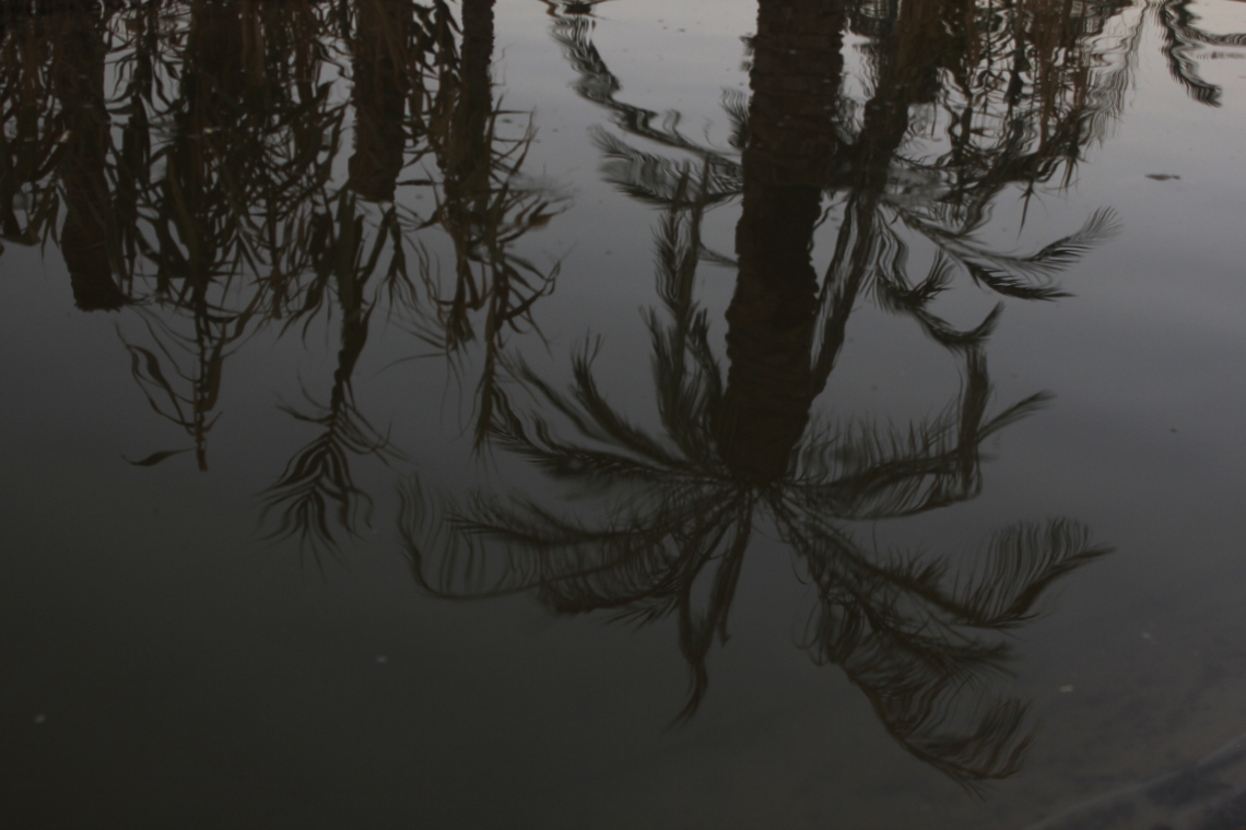 سوگواره دوم-عکس 14-رويا غفارزاده-جلسه هیأت فضای بیرونی