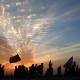 سوگواره پنجم-عکس 2-مهرداد عزیزاللهی-پیاده روی اربعین از نجف تا کربلا