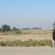 سوگواره چهارم-عکس 36-مجید پناهی-پیاده روی اربعین از نجف تا کربلا