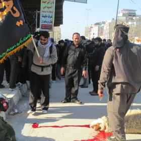 سوگواره دوم-عکس 3-ابوذر کمال-پیاده روی اربعین از نجف تا کربلا