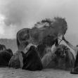 فراخوان ششمین سوگواره عاشورایی عکس هیأت-هاتف حسینی-بخش اصلی -جلسه هیأت