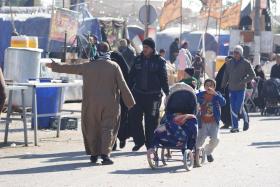 سوگواره دوم-عکس 40-محسن مرادی-پیاده روی اربعین از نجف تا کربلا