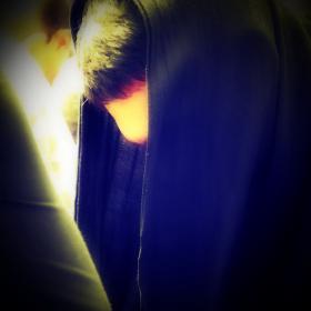 سوگواره چهارم-عکس 2-موسی الرضا ده مرده-آیین های عزاداری