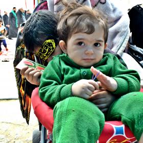 سوگواره پنجم-عکس 27-محمد حسین صادقی-پیاده روی اربعین از نجف تا کربلا