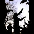 سوگواره سوم-عکس 68-علی ناصری-آیین های عزاداری