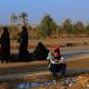 سوگواره سوم-عکس 1-محمدباقر عزیزی نژاد-پیاده روی اربعین از نجف تا کربلا