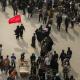 سوگواره پنجم-عکس 4-یحیی محمد علیی-پیاده روی اربعین از نجف تا کربلا