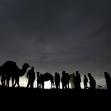 فراخوان ششمین سوگواره عاشورایی عکس هیأت-معصومه  فریبرزی-بخش جنبی-هیأت کودک
