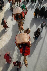 سوگواره چهارم-عکس 20-مجید حجتی-پیاده روی اربعین از نجف تا کربلا