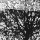 سوگواره پنجم-عکس 7-زهرا حیدری-جلسه هیأت