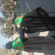سوگواره دوم-عکس 4-عین الله متقی زاده-پیاده روی اربعین از نجف تا کربلا