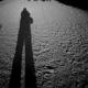 سوگواره پنجم-عکس 15-محمد حسین صادقی-پیاده روی اربعین از نجف تا کربلا
