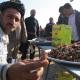 سوگواره دوم-عکس 1-علی ضیائی-پیاده روی اربعین از نجف تا کربلا