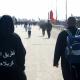 سوگواره چهارم-عکس 2-میلاد محمدی-پیاده روی اربعین از نجف تا کربلا