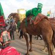 سوگواره چهارم-عکس 9-هادی ابوطالبی-پیاده روی اربعین از نجف تا کربلا
