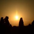 سوگواره سوم-عکس 18-حسین بهرام نژاد-پیاده روی اربعین از نجف تا کربلا