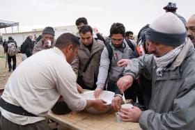 سوگواره دوم-عکس 60-محسن مرادی-پیاده روی اربعین از نجف تا کربلا