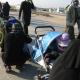 سوگواره دوم-عکس 64-محمد کشاورز-پیاده روی اربعین از نجف تا کربلا