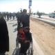 سوگواره چهارم-عکس 69- احمد عسگری زاده-پیاده روی اربعین از نجف تا کربلا