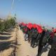 سوگواره دوم-عکس 54-محمد کشاورز-پیاده روی اربعین از نجف تا کربلا
