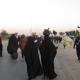 سوگواره دوم-عکس 131-محمد کشاورز-پیاده روی اربعین از نجف تا کربلا