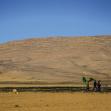 سوگواره سوم-عکس 11-پیمان حمیدی پور-پیاده روی اربعین از نجف تا کربلا